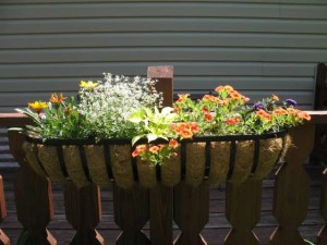 Trough Window Box Planter